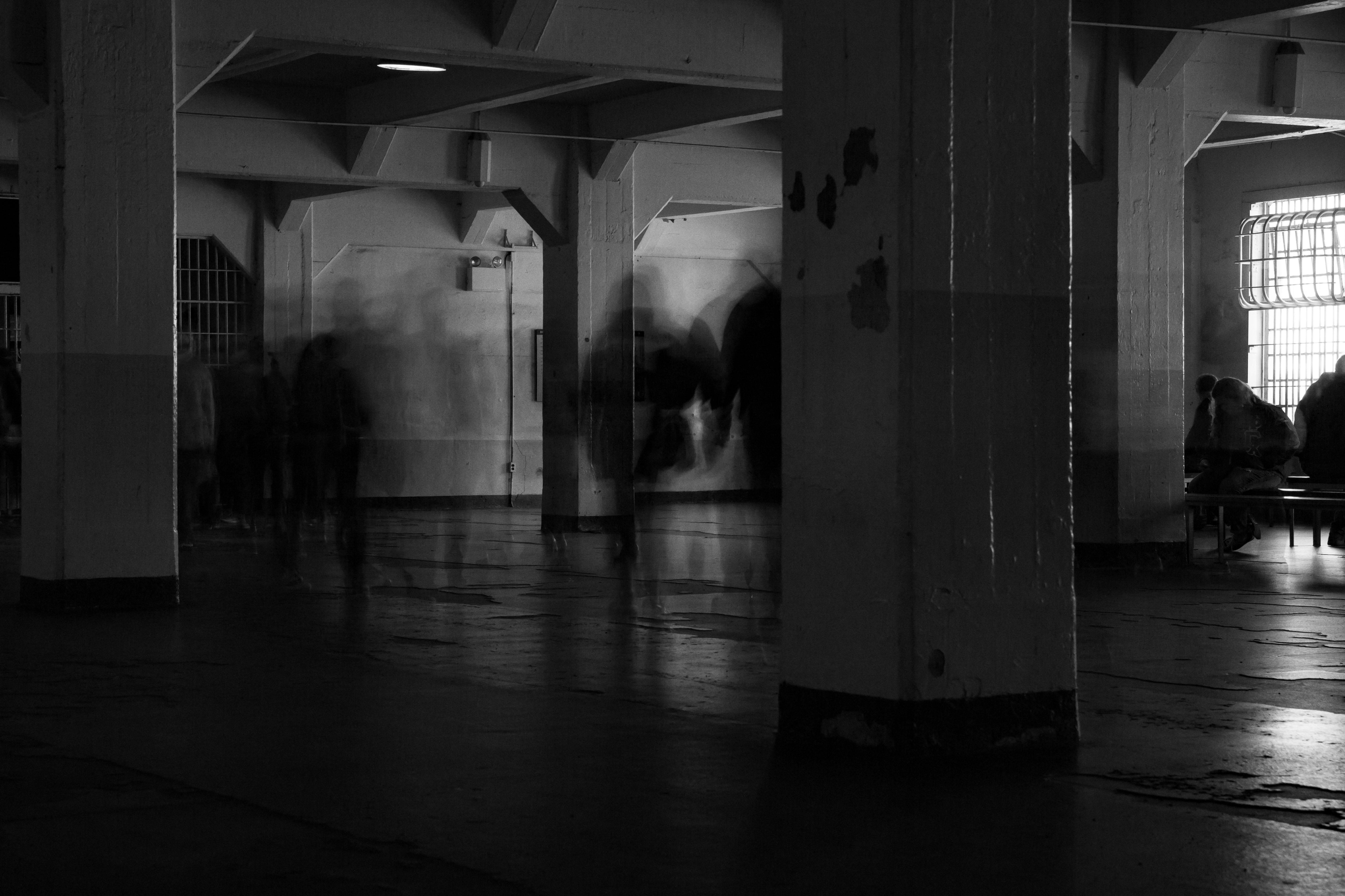 alcatraz-motion-wp (1 of 1)